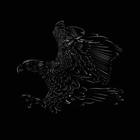 eagle vector on black ilustration tatoo wild cartoon