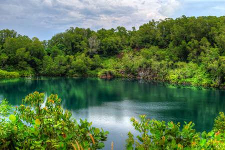 forest river: Pulau Ubin Singapore Lagoon