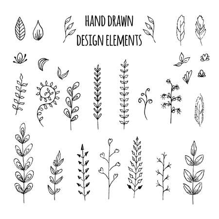scroll: Set of hand drawn design elements. Vector illustration for your design Illustration
