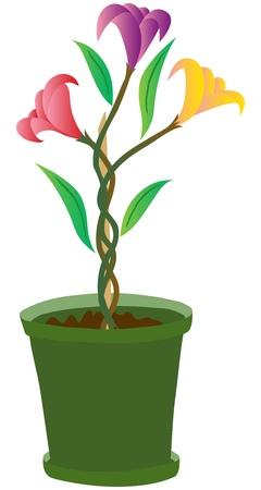 Flower Pot Illustration