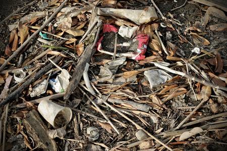 dumps: Waste pollution