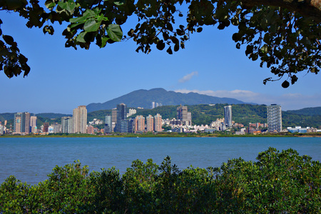 Tamsui cityscape with plant silhouette