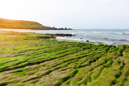 Green reef of Laomei coast