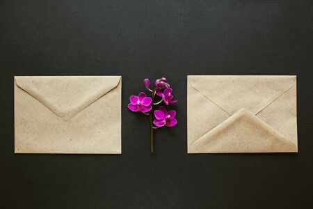 Two envelopes made of environmentally friendly brown material. Simple brown paper envelopes for letters. Purple Orchid flowers for decoration. The layout for the design.