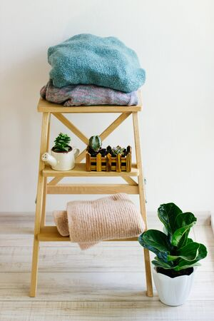 Several warm sweaters on a wooden shelf on a light background. Autumn and winter clothes. Small plants in pretty pots. Ficus and succulents. Light stylish cozy scandinavian home interior decor.