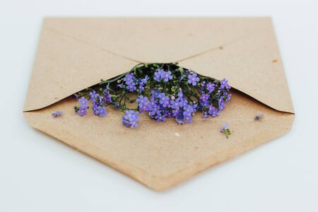 Little cute blue forget-me-nots in a Kraft paper envelope, selective focus. Beautiful bouquet of blue flowers bruners on a light background. Flat lay.