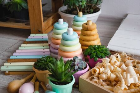 Childrens wooden toys and succulents in multicolored pots.