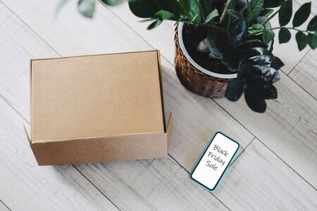 The craft box was delivered from an online store. The smartphone, box and zamiokulkas are on the floor. Make purchases without leaving your home. Contactless delivery of goods. Black Friday Sale.
