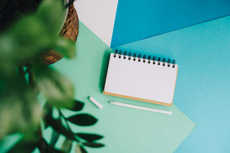 A house plant, a notebook and a pen lie on an abstract background. Abstract background of blue, white and green. A clean page of a notebook for text or design.