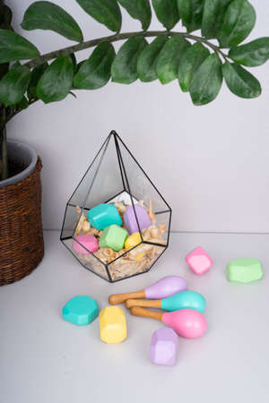 Children's wooden constructors in a glass florarium. Colored cubes of various shapes. Baby maracas. Green branch of houseplants.