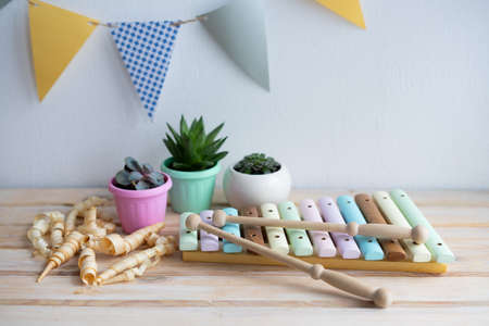 Xylophone is made of natural wood. Wooden sticks for musical instruments. Musical instrument made of natural wood without the use of plastic. Succulents in small pretty pots.
