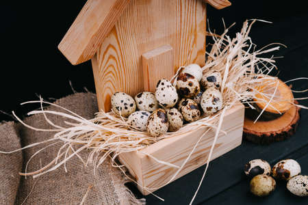 Quail eggs in a wooden house. Easter composition on a black background.