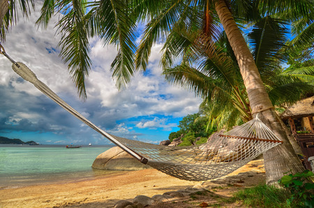 Hammock between palm trees at the seaside on a tropical island Stock Photo