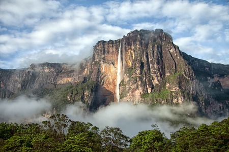 angel tree: Closeup of the highest waterfall on a planet - Salto Angel Stock Photo