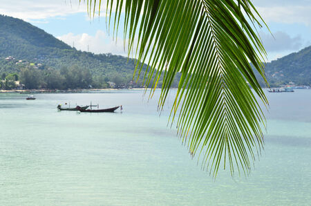 Tropical paradise - closeup of palm leaf and turquoise sea water with longtail boats and green hills behind it photo
