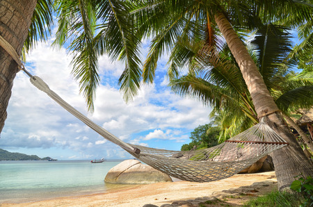 Hammock hanging between palm trees at sandy beach - tropical paradise Stock Photo