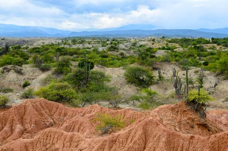 sandstone: Two color sandstone formation of Tatacoa dry tropical forest covered with green bushes and cactus