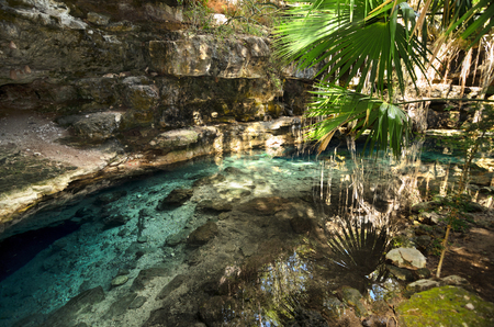 X-Batun Cenote - natural lagoon with transparent turquoise water surrounded by rocks and tropical vegetation Фото со стока