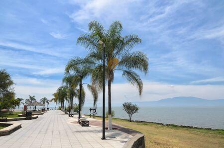 empedrado: palmeras en el terrapl�n pavimentado a lo largo del lago de Chapala Foto de archivo