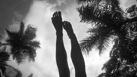 Womans legs in the sky among palm trees - surrealistic shoot from underwater Stock Photo