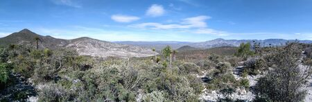 Stunning view on dry forest full of succulent plants, lost in the mountains. Zdjęcie Seryjne