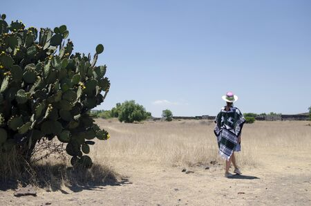Anonymous tourist female in poncho and sombrero walking among cacti in a desert in Mexico.