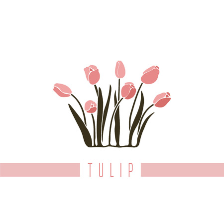 Vector illustration of a series of pictures with different flowers. The tulip is depicted in a flat style.