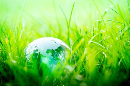 transparent globe: Green & Eco environment, glass globe in the garden Stock Photo