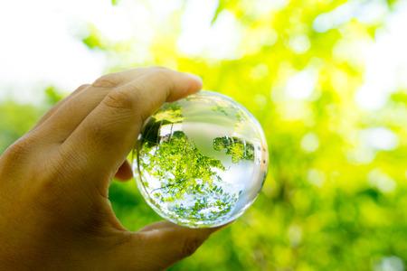 global environment: Green & Eco environment, glass globe in the garden Stock Photo