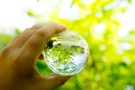 Green & Eco environment, glass globe in the garden 免版税图像
