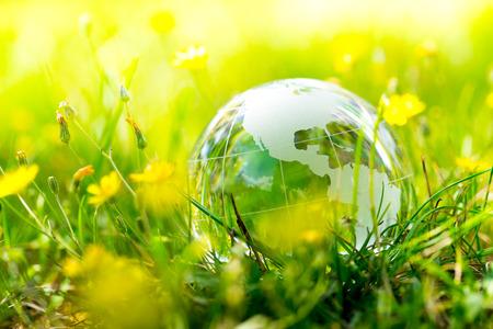protect earth: Green & Eco environment, glass globe in the garden Stock Photo