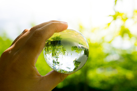 the natural world: Green & Eco environment, glass globe in the garden Stock Photo