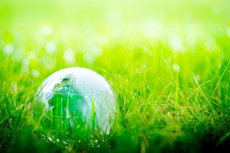 green eco: Green & Eco environment, glass globe in the garden Stock Photo