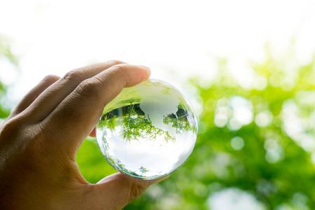 green environment: Green & Eco environment, glass globe in the garden Stock Photo