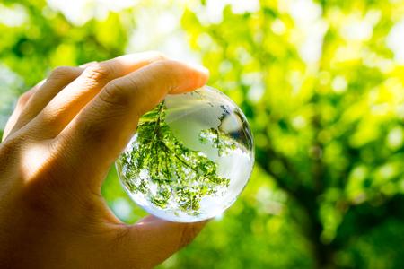 mundo manos: Verde y ecológico medio ambiente, globo de cristal en el jardín