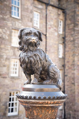 bobby: EDINBURGH, SCOTLAND - SEPTEMBER, 10, 2014 : Life-size statue of Greyfriars Bobby a Skye Terrier who spent 14 years guarding the grave of his owner, John Gray, until he died on 14 January 1872 on June 07