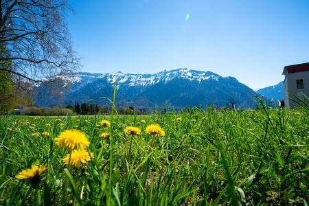 Ville d'Interlaken et Jungfrau, Suisse