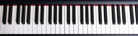 Professional instrument. Piano keys view from above.