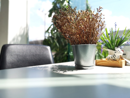 table and chair near the window with sunlights for background 版權商用圖片