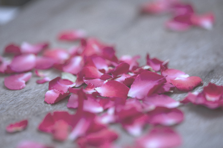 low opacity of Red Rose petals on wood table for background and greeting cards or presentation Reklamní fotografie