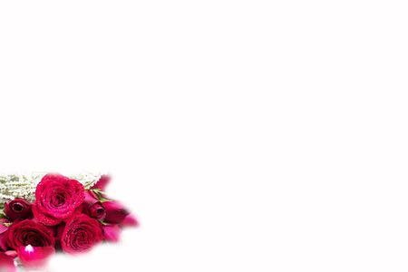 low opacity and defocus of red roses  with bokehfor background and greeting cards or presentation Reklamní fotografie