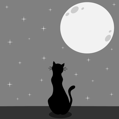 friday 13: black cat silhouette looking the full moon in a starry night vector illustration