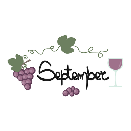 cute hand drawn lettering september text with grapes and wine vector card 일러스트