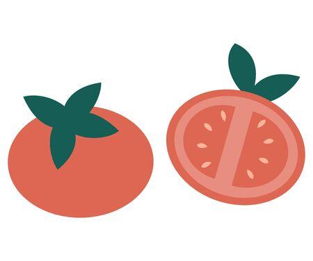 Tomato isolated on white background vector illustration