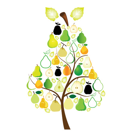 Pears vectorial
