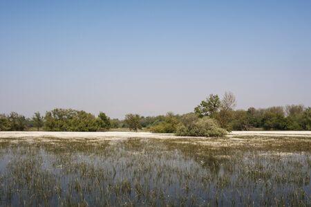 farmland: Farmland flooded