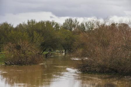 flooded: Farmland flooded