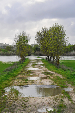 Field flooded by rainwater Stock Photo