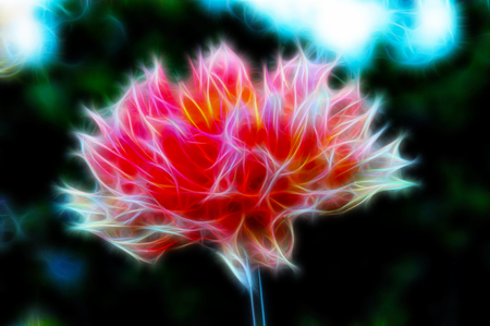Background with flower with fractal effect Stock Photo