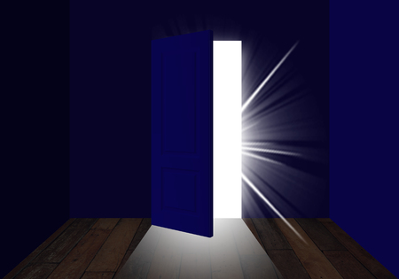 Semi-open door that lets light in